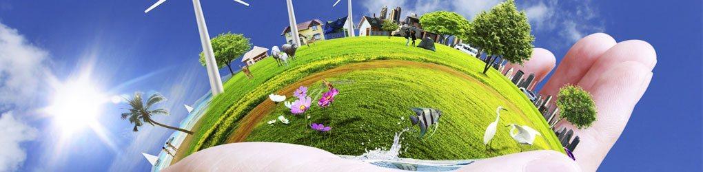 environmental-management-system